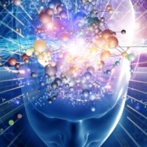 brain-prv_610_300_s_c1_center_center